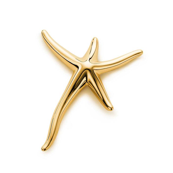 金色海星胸针