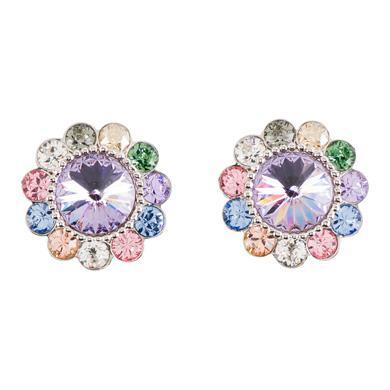 彩色施华洛世奇(Swarovski (C))水晶装饰耳环